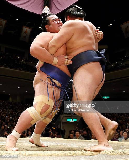Ozeki Kotoshogiku pushes Mongolian yokozuna Kakuryu out of the ring to win during day ten of the Grand Sumo New Year Tournament at Ryogoku Kokugikan...