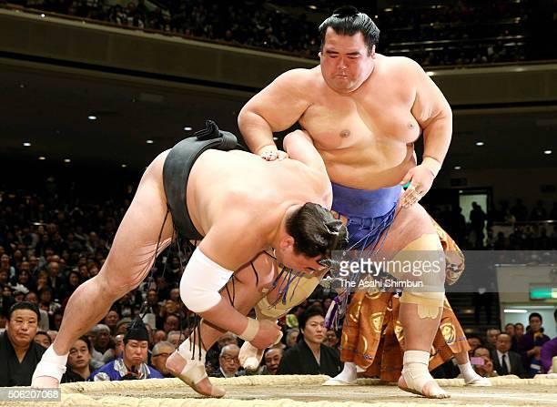 Ozeki Kotoshogiku throws Mongolian yokozuna Harumafuji to win during day twelve of the Grand Sumo New Year Tournament at Ryogoku Kokugikan on January...