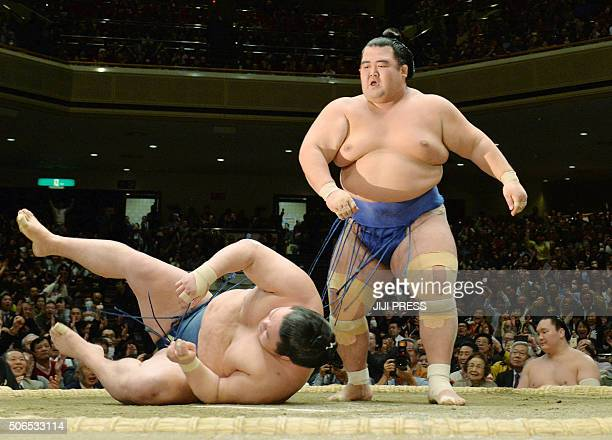 TOPSHOT Ozeki or champion Kotoshogiku throws down fellow ozekiranked wrestler Goeido during their final bout in the New Year Grand Sumo tournament in...