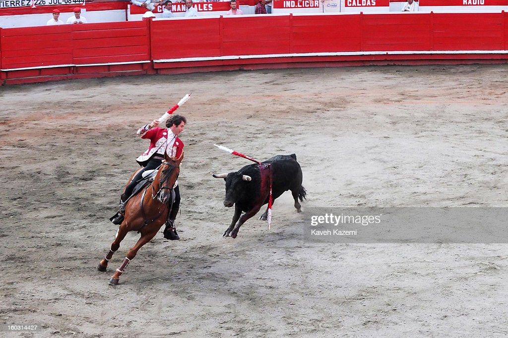 Pablo Hermoso the most famous Spanish bullfighter known for fighting a bull while mounted on a horse otherwise known as 'Rejoneador' during the annual fair on January 11, 2013 in Manizales, Colombia. The festival, is hosted in the city of Manizales in Colombia's central coffee region. Starting out as a trade fair, it has grown over the years to become one of Colombia's most important annual events.
