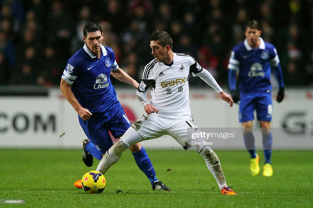 Pablo Hernandez of Swansea is challenged by Gareth Barry of Everton during the Barclays Premier League match between Swansea City and Everton at the Liberty Stadium on December 22, 2013 in Swansea, Wales.
