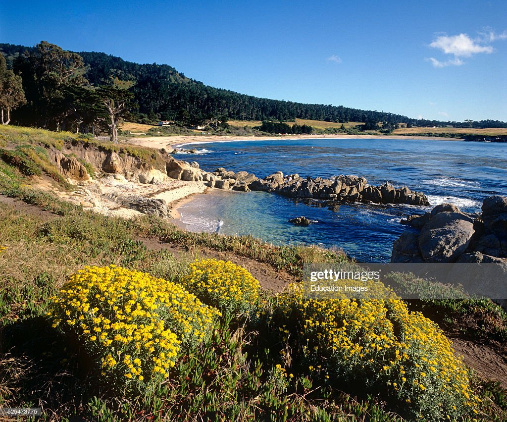 Pacific Coast Line Just North Of Point Lobos State Park Carmel California