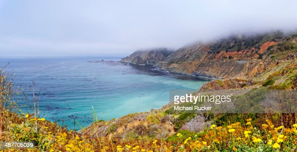 Pacific coast near Landels-Hill Big Creek, California, United States