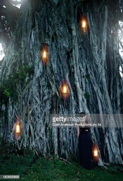 Pacific Islander woman by illuminated banyan tree