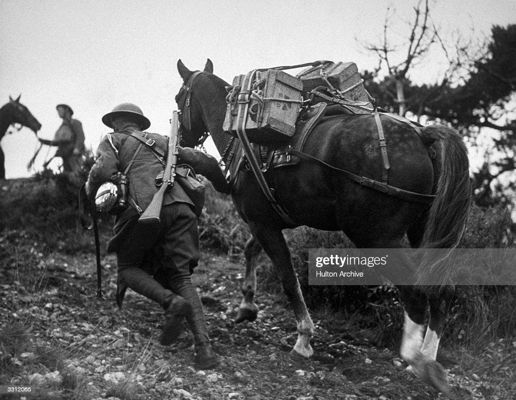 A pack horse transport exercise, crossing ground impassable to motor vehicles.