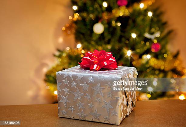 package in front of Christmas tree.