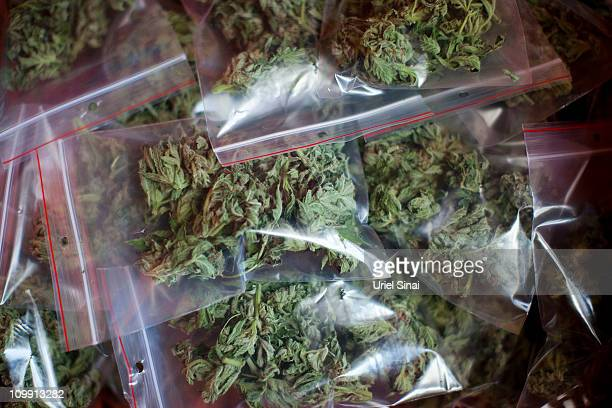 Packed cannabis at the growing facility of the Tikun Olam company on March 7 2011 near the northern city of Safed Israel In conjunction with Israel's...