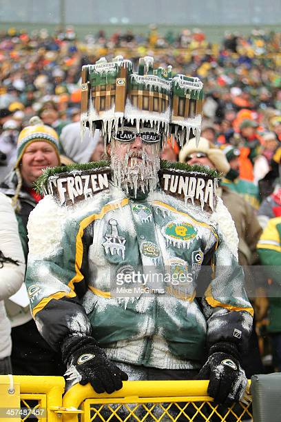 Packer fan dressed in the frozen tundra during the game between the Green Bay Packers and the Atlanta Falcons at Lambeau Field on December 08 2013 in...