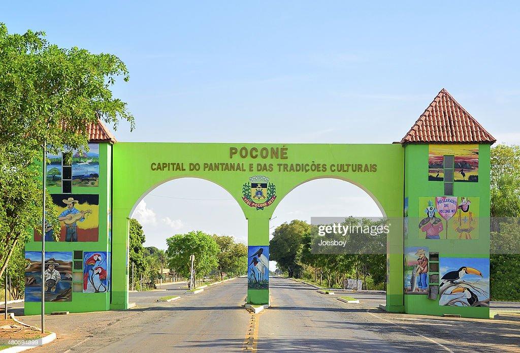 Pacone Gateway To Pantanal : Stock Photo
