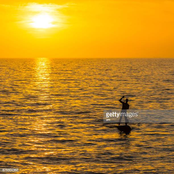 Paddle boarder rowing towards the sun