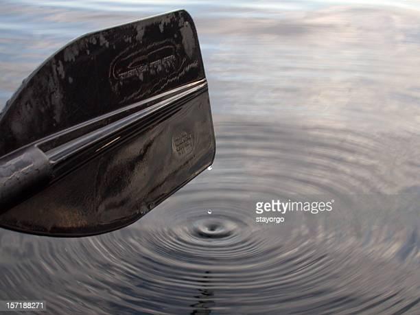 Paddle eau à la volée