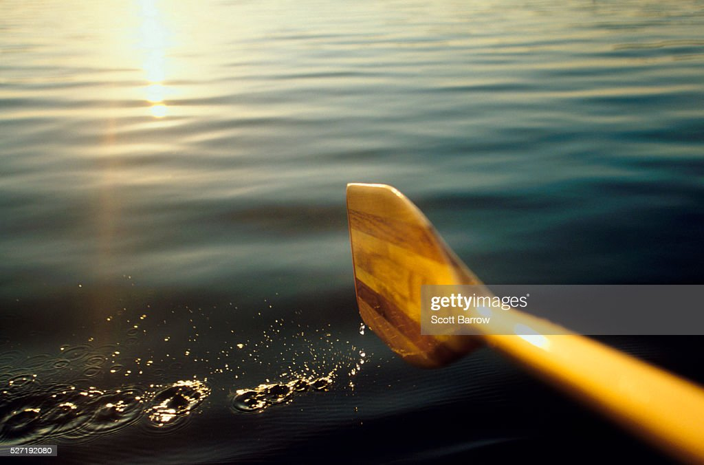 Paddling on a calm lake : Stock Photo