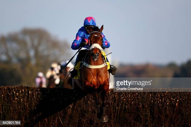 Paddy Brennan clears the last on Cue Card to win The Betfair Ascot Steeple Chase at Ascot Racecourse on February 18 2017 in Ascot England