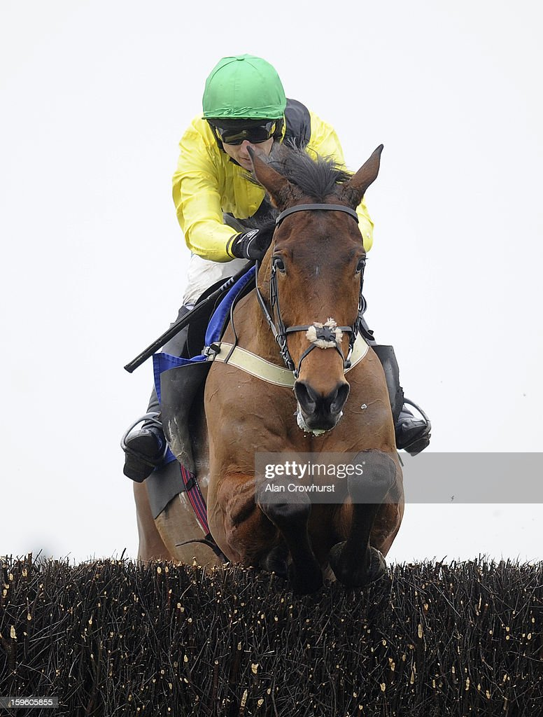 Paddy Brennan riding Ballyallia clear the last to win The Higos Insurance Services Platinum Handicap Steeple Chase at Wincanton racecourse on January 17, 2013 in Wincanton, England.