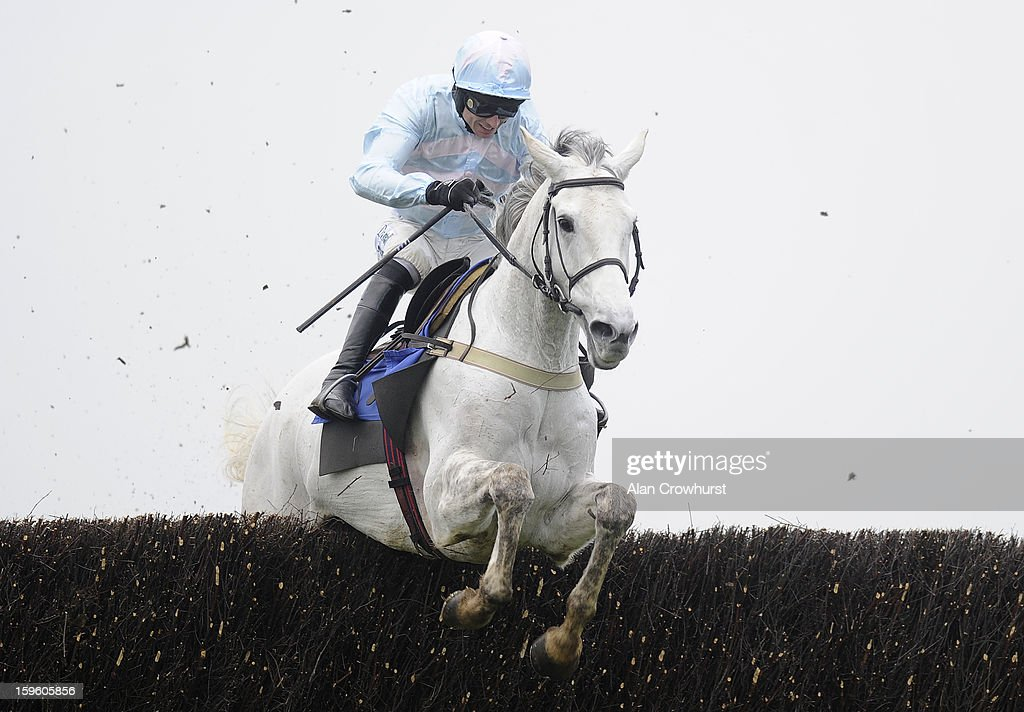 Paddy Brennan riding Chartreux clear the last to win The Higos Insurance Services Somerset National Handicap Steeple Chase at Wincanton racecourse on January 17, 2013 in Wincanton, England.