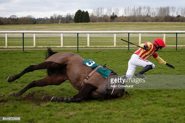 Paddy Brennan riding Global Stage fall at the last at Warwick Racecourse on February 24 2017 in Warwick England