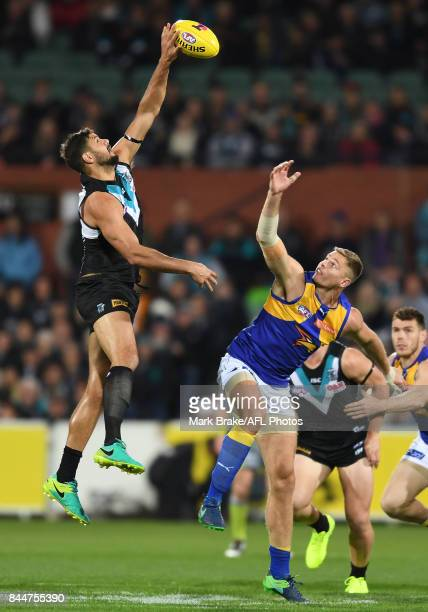 Paddy Ryder wins the centre tap during the AFL First Elimination Final match between Port Adelaide Power and West Coast Eagles at Adelaide Oval on...