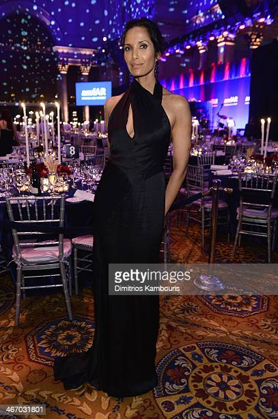 Padma Lakshmi attends the 2014 amfAR New York Gala at Cipriani Wall Street on February 5 2014 in New York City