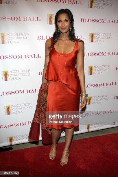 Padma Lakshmi attends The BLOSSOM BALL To Benefit The Endometriosis Foundation of America at The Prince George Ballroom on April 20 2009 in New York...