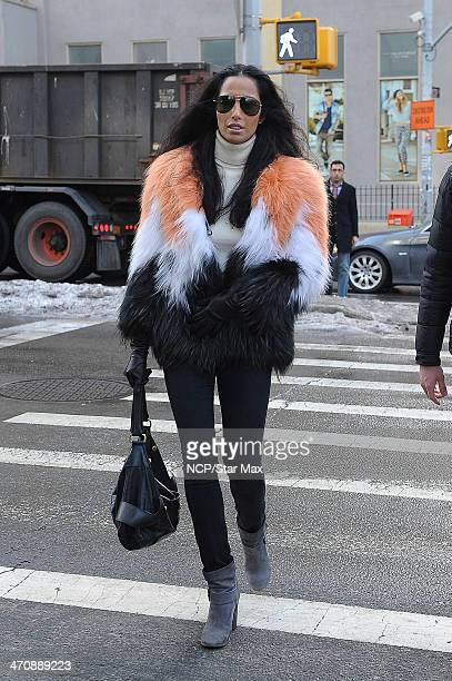 Padma Lakshmi is seen on February 20 2014 in New York City