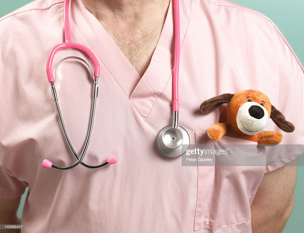 Paediatrician with stethoscope and soft toy : Stock Photo
