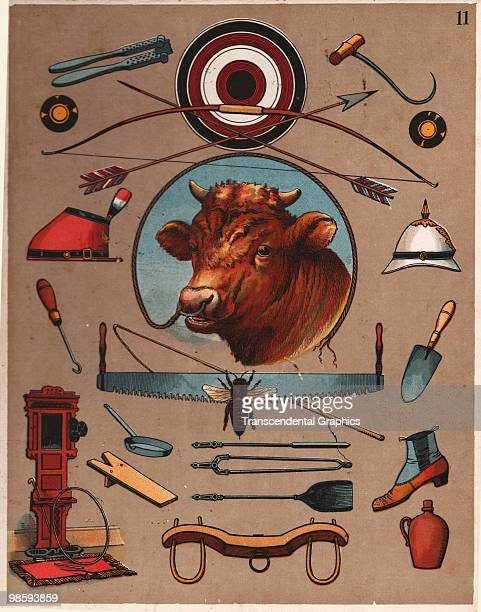A page from a book of lithographed objects features a bull at the center New York 1884 This Object Teacher was published by the McLoughlin Company