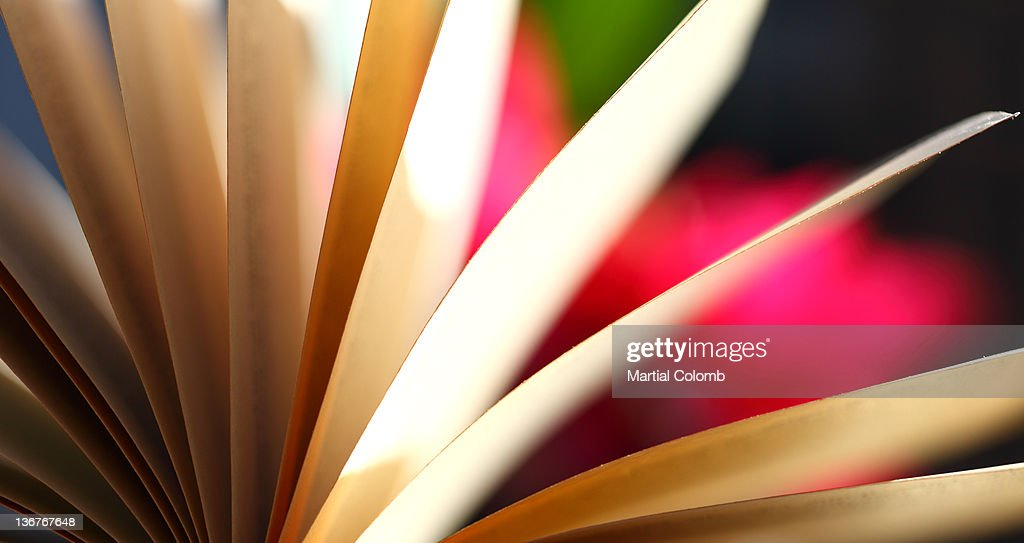 pages of book : Stock Photo