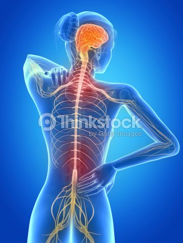 Schmerzhaften Rücken Nerven Stock-Foto | Thinkstock