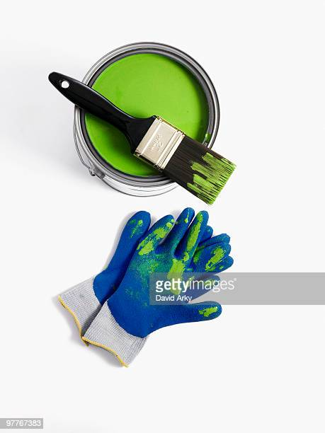 Paint brush and gloves