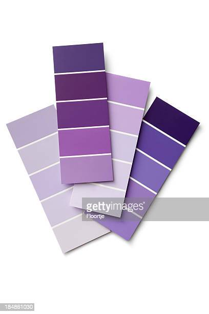 Paint: Purple Colour Samples Isolated on White Background