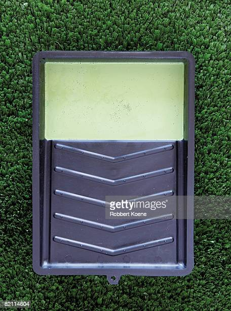 Paint tray with green paint lying on green grass