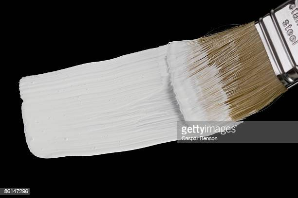 A paintbrush painting a white strip