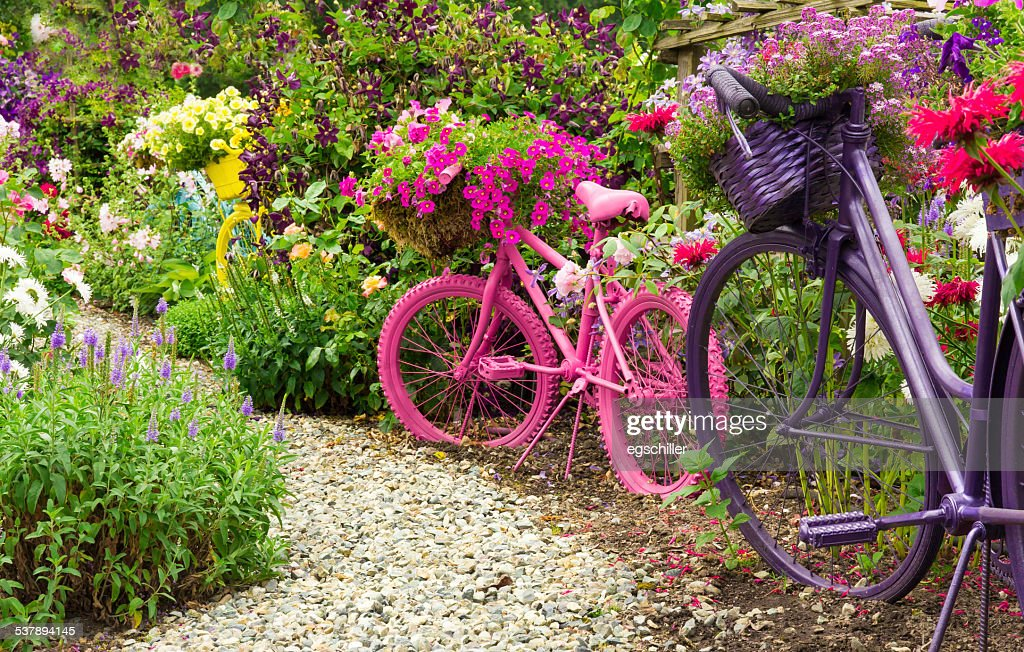 Painted Bicycles As Garden Art Planters : Stock Photo