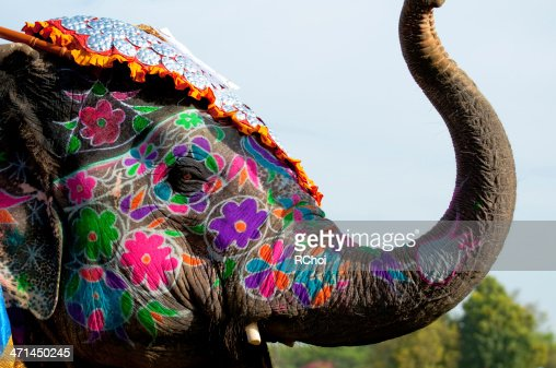 Painted elephant festival in Jaipur : Stock Photo