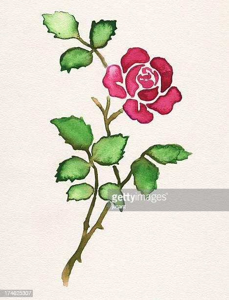 rose aquarelle peinte