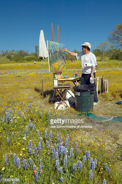 Painter painting a landscape on canvas in field of multicolored flowers on Shell Creek Road off highway 58 CA