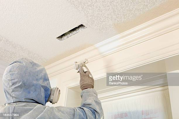 Painter Spraying Paint on Crown Moulding