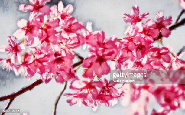 Painterly Image of Blossoming Pink Crabapple Tree