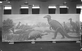 Painting by Charles R Knight depicting late or upper Cretaceous Dinosaurs showing a helmetcrested Corythosaurus submerged in water a herd of...