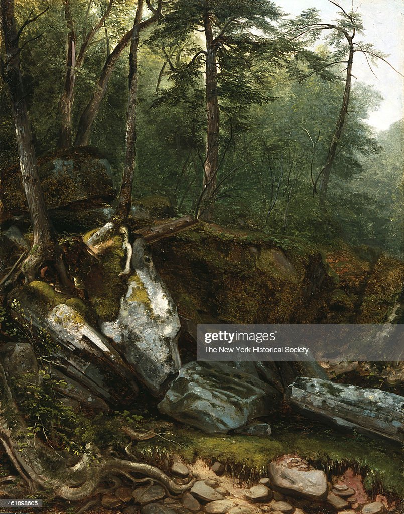 Painting for a study from Nature Rocks and Trees in the Catskills NY 1856