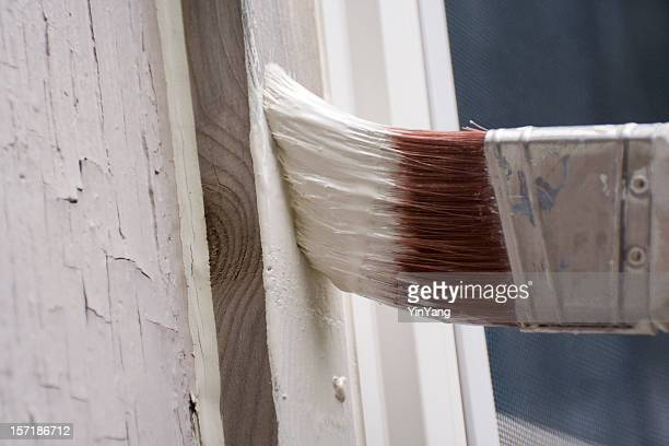 Painting House, Home Improvement and Repairing of Residential Home