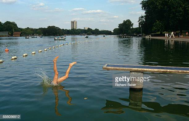 A pair of awkwardly splayed legs disappear into the cold murky waters of the Serpentine Lake in London's Hyde Park the swimmer having just dived...