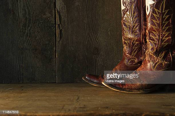 Pair of cowboy shoes