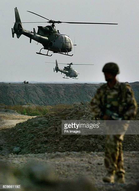A pair of Gazelle helicopters from 3 Army Air Corps fly low over soldiers from The 1st Battalion The Parachute Regiment crossing fields north west of...