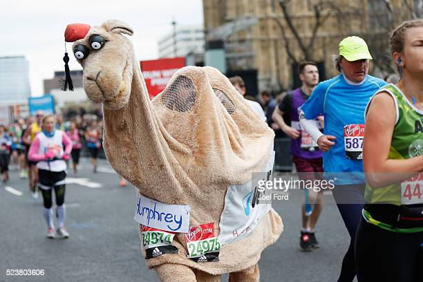 A pair of runners supporting Water Aid compete dressed as a camel during the Virgin Money London Marathon on April 24 2016 in London England