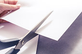 A Pair Of Scissors Cutting White Paper, Holded By Female Hands