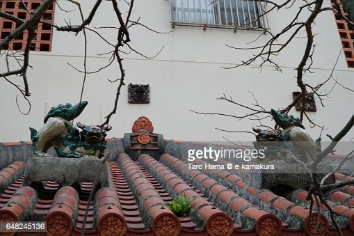 Pair of Shisa, Okinawa's traditional decoration on roof tile. : ストックフォト