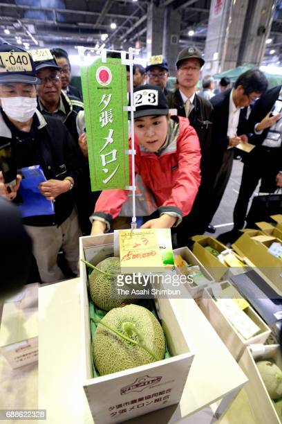 A pair of 'Yubari Melon' are seen after the first auction of the season at Sapporo City Wholesale Market on May 26 2017 in Sapporo Hokkaido Japan The...