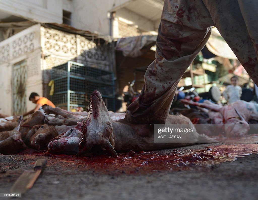 A Pakistani butcher slaughters a goat on the first day of the Muslim festival Eid al-Adha in Karachi on October 27, 2012. Eid al-Adha, or the Feast of Sacrifice, honours Abraham's willingness to sacrifice his son Ishmael on the order of God, who according to tradition then provided a lamb in the boy's place. AFP PHOTO/Asif HASSAN