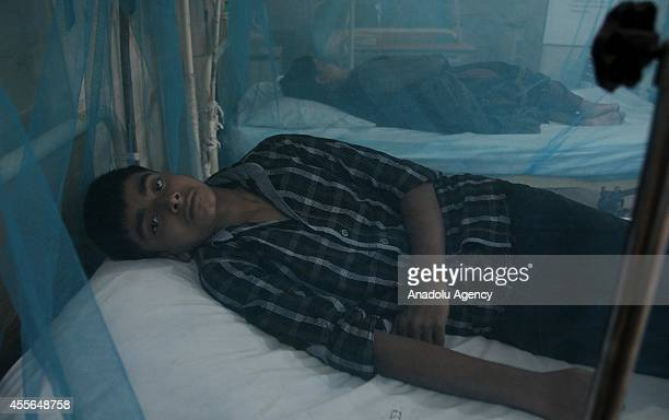 Pakistani dengue fever patient lies on his bed with a mosquito net at an isolated ward of a hospital in Rawalpindi Pakistan on September 18 2014 The...